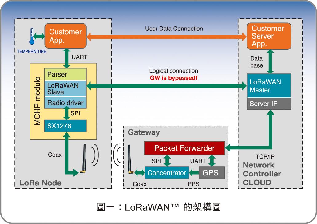 圖一:LoRaWAN的架構圖